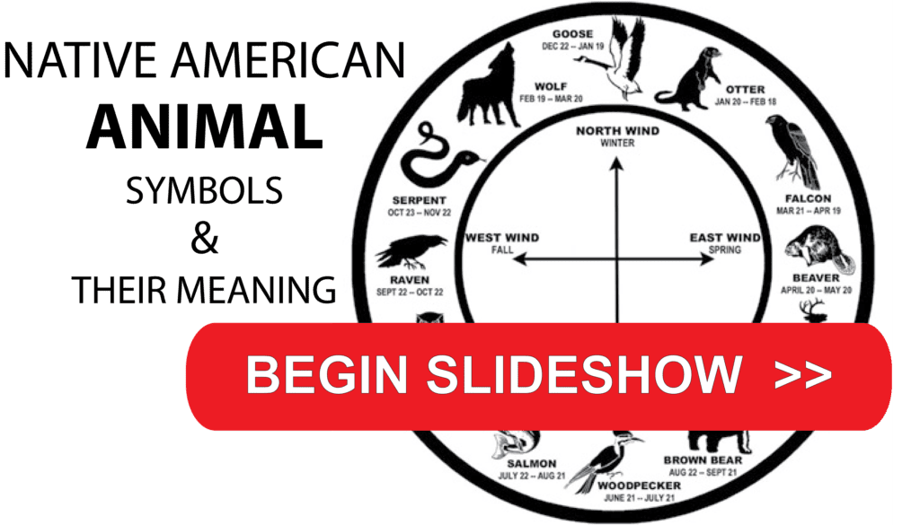 Native American Zodiac Symbols Their Meaning Poplively