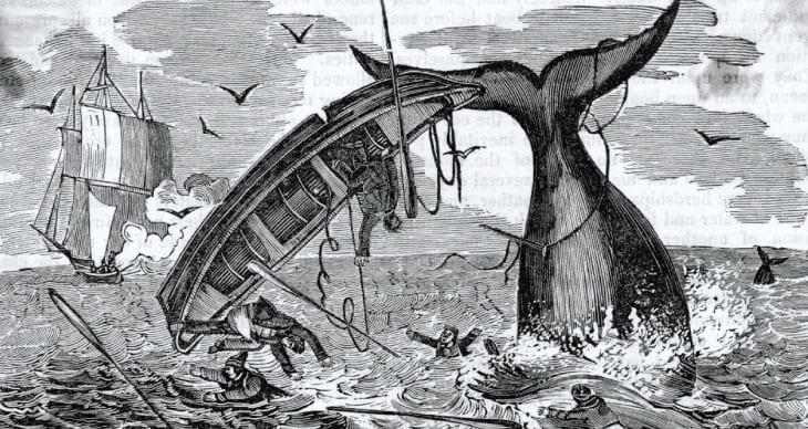 Ye Old Sea Shanties – Traditional Sailor Folk Songs Gone Viral